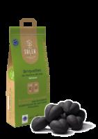 SOLER-Bio-épuré-Briquettes de charbon de bois