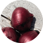 Soler - Recette - Hot dog - Oignon rouge