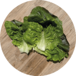 Soler - Recette - Hot dog - Salade