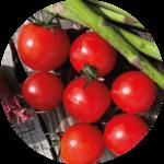 Soler - Recette - Barbecue - Tomates cerises
